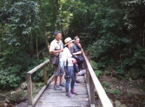 Read more about the article Malaysia Zone Montane