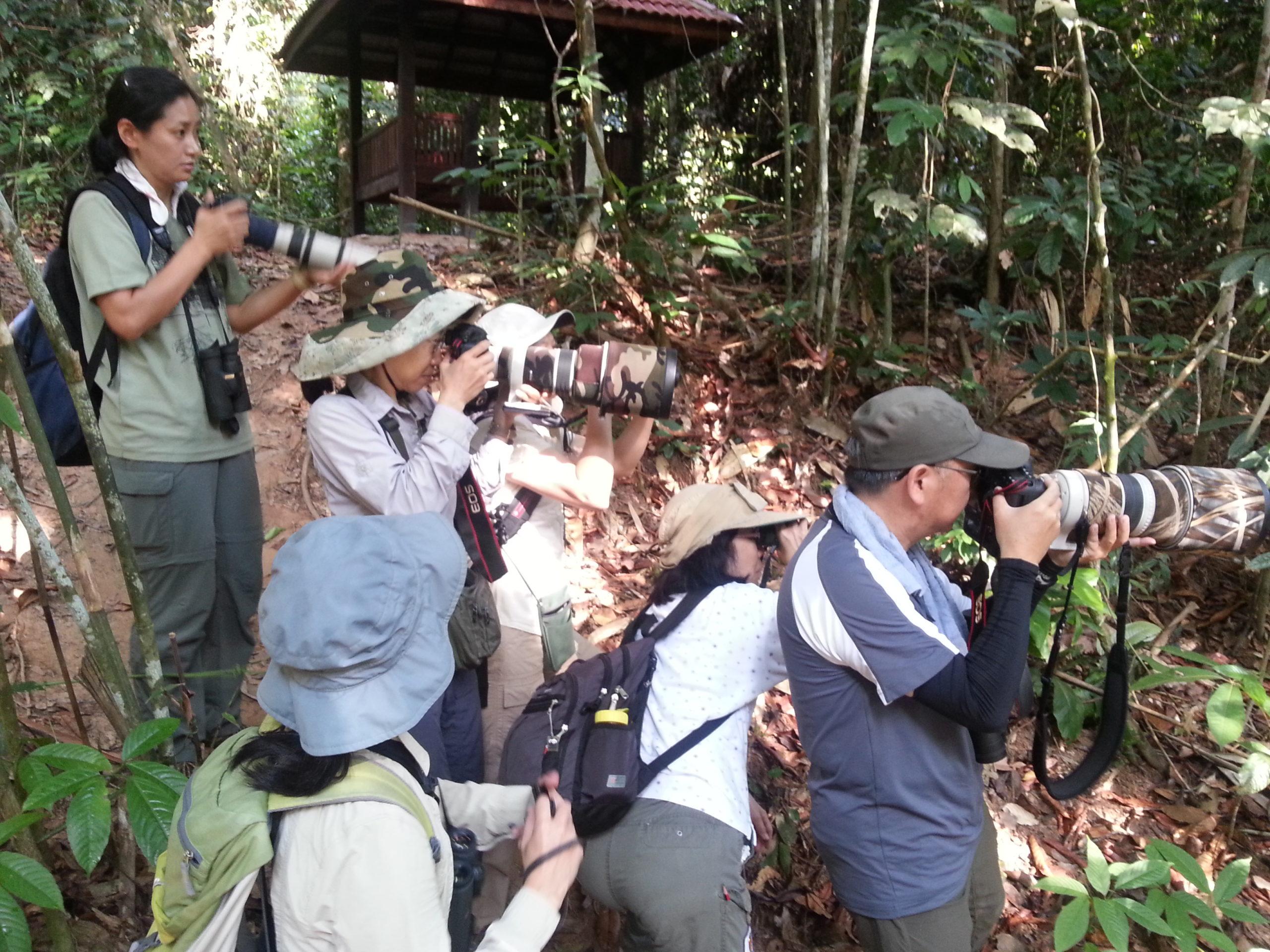 Malaysia Zone Lowlands