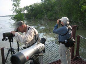 Borneo Birding Sites